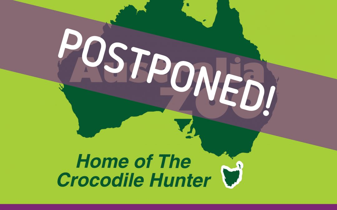 Australia Zoo Excursion – POSTPONED